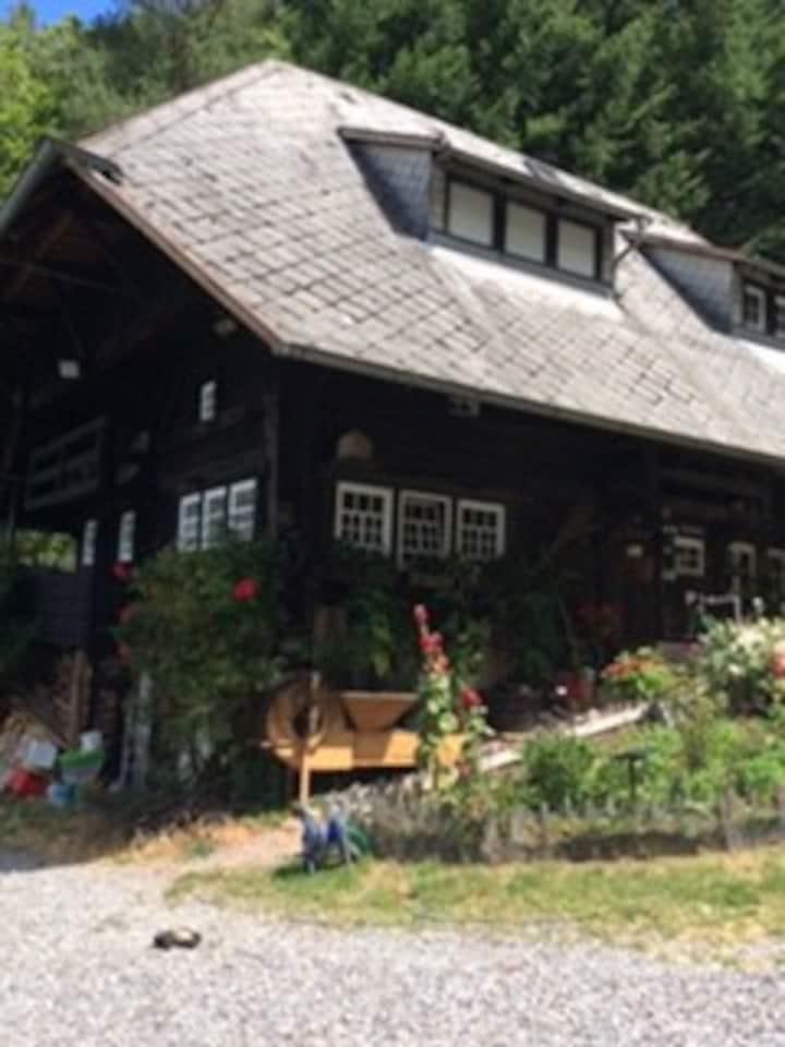 Schwarzwaldhaus einzigartige-  idyllische Lage