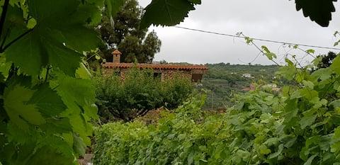 LA TAGORA  Casa Rural in Icod de los Vinos