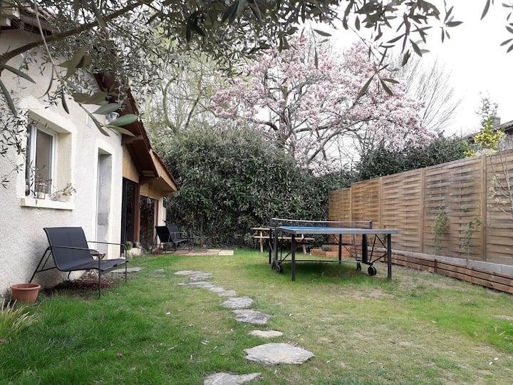 L'olivier en Périgord