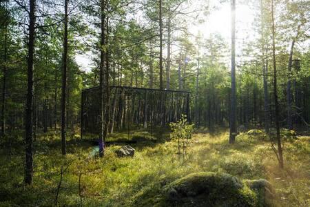 ÖÖD Hötels Roosta - cozy hotel in fairytale forest