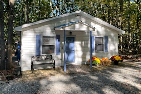 Minutes To Lake Wallenpaupack, Hot Tub, Fire Pit