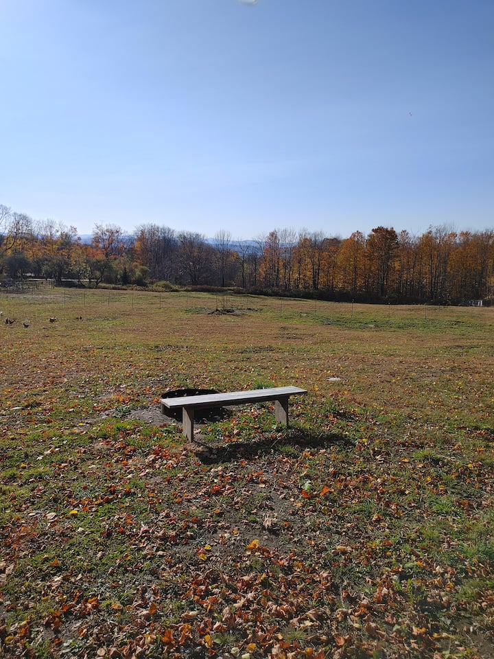Four Corners Farm Campsite