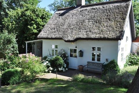 Zauberhaftes englisches Cottage am Gutshaus