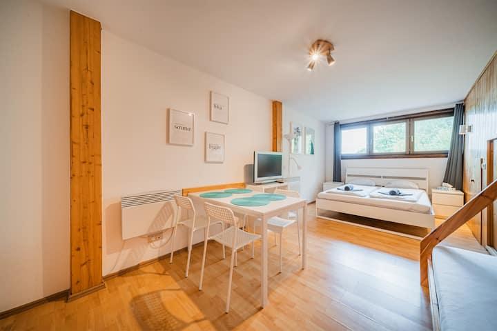 Gemütliches See Apartment / wunderschöne Lage
