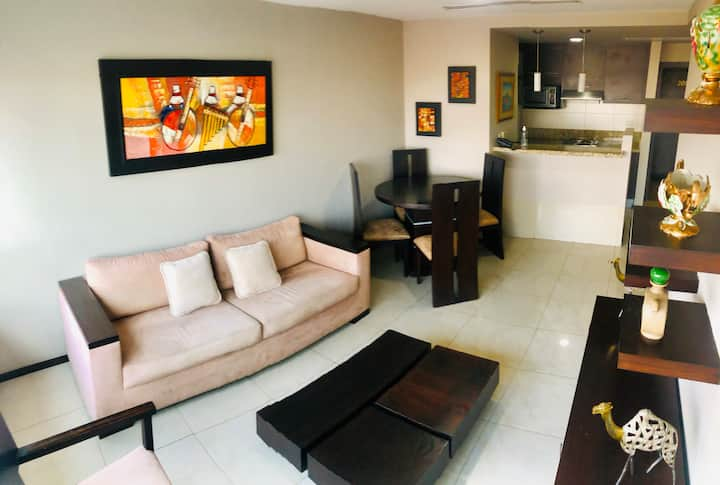 LUXURY SUITE -MALL DEL SOL/airport with GARAGE