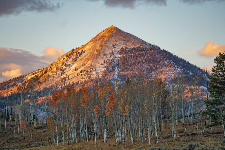 The Woof Ranch Bed & Breakfast by Hahns Peak
