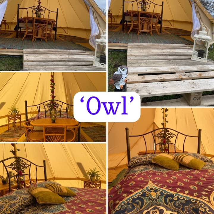 Rustic, Stress Free Ready To Go Camping ' OWL'