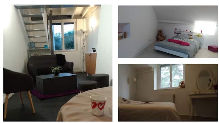 Duplex 2 Chambres proche Vulcania et Puy de Dôme