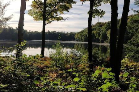 Algonquin Park area, Retreat on non motor Lake!