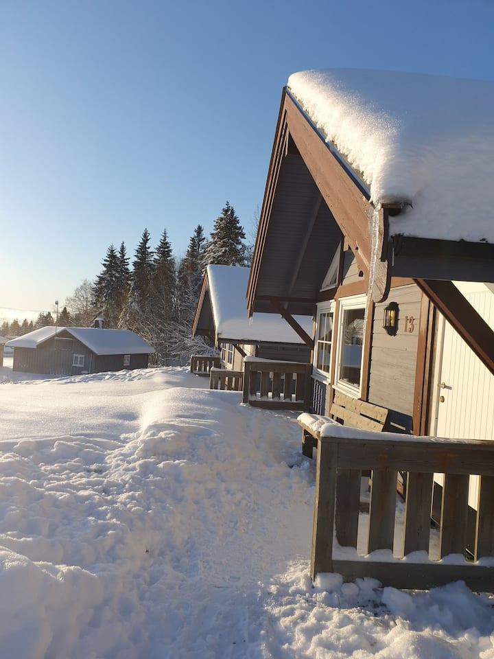 Fin liten hytte - kort vei til Hamar og fjellet!