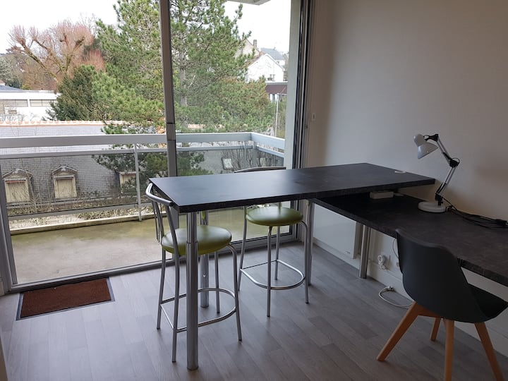 Superbe studio refait neuf Balcon 1km Tours centre