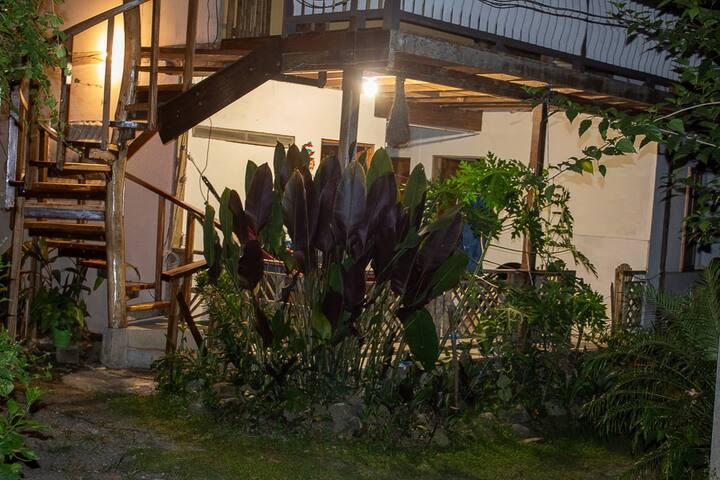Allobates - Habitación Privada