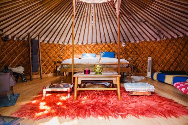"B&B Reijgershof ""Yurt"""