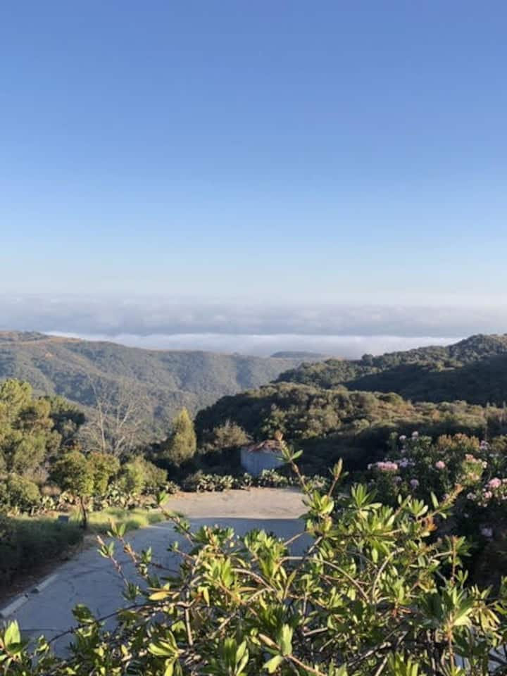 15 ACRE RETREAT OVER THE SEA & ABOVE THE CLOUDS