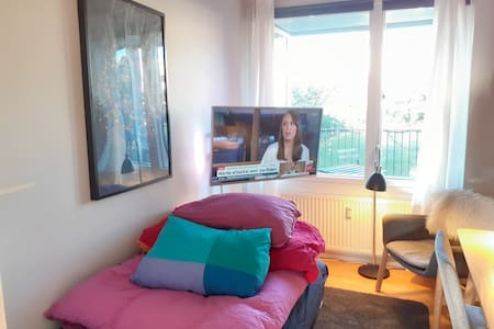 Cheap and good room in Copenhagen