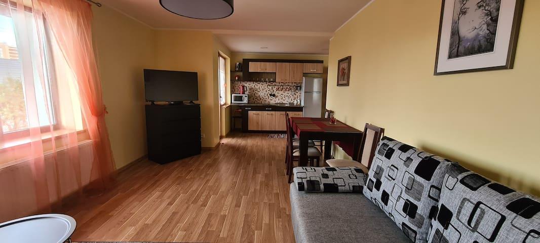 Spacious apartment I