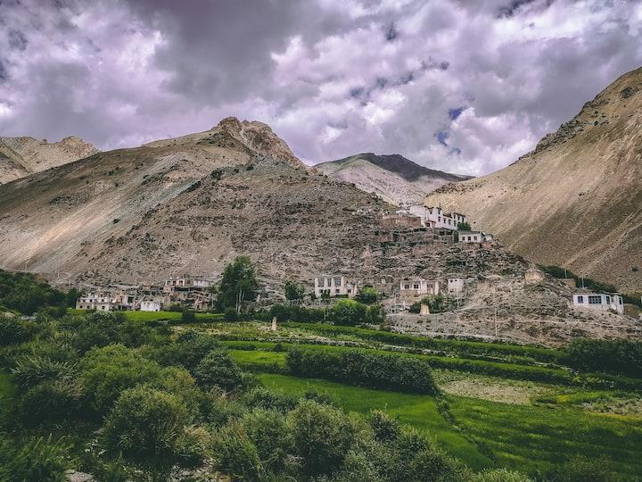 Stay at Sumda Chun Village Markha Valley, Ladakh