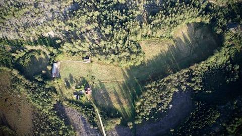 숲 한 가운데 자리 잡은 아늑한 통나무집