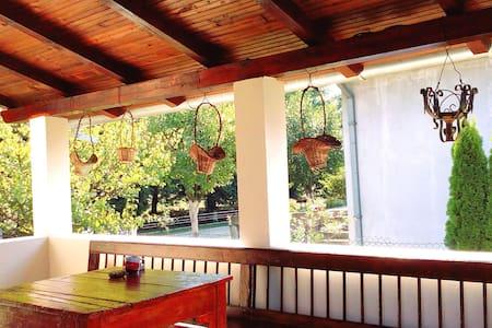 Jokina kuća na korak do Srebrnog jezera i Golupca