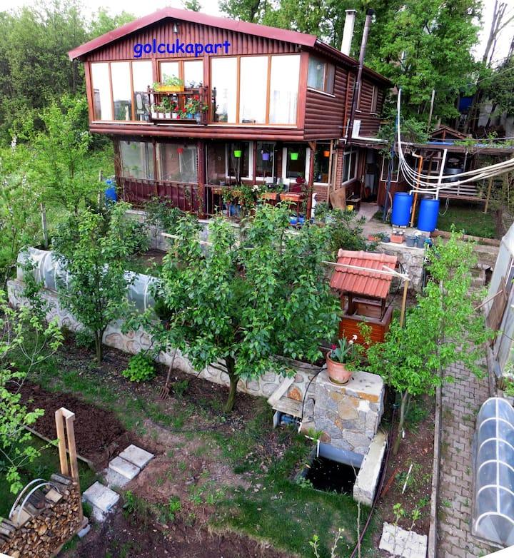 Gölcük Hisareyn'de doğa içerisinde ev golcukapart