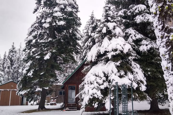 Beautiful Getaway Cabin