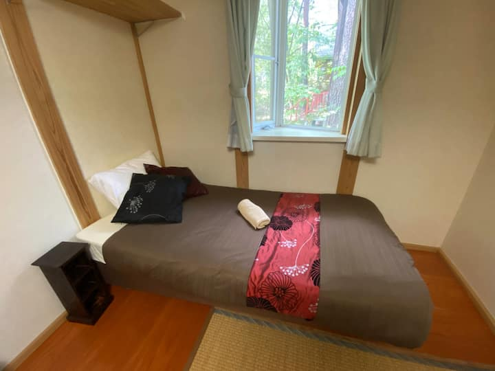 Hakuba Snowdrift Lodge single room