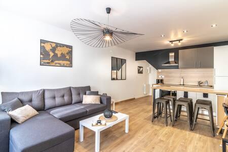 Appartement Design Beauval et Châteaux de la Loire