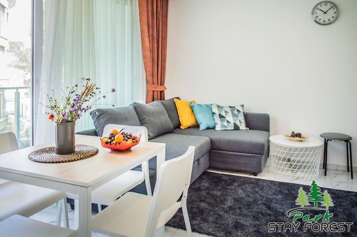 Зона гостиной и кухня  The living room and kitchen