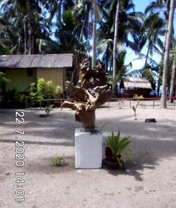 Erholung direkt am Meer. Traum-Insel Sibuyan