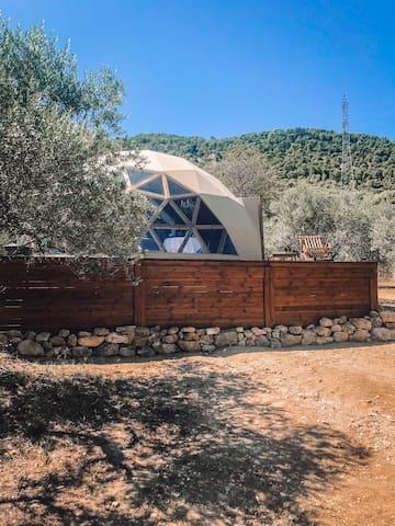 Bubble Suite by Masia Pla del Bosc
