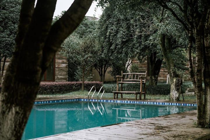 莫干山特色树屋loft家庭房/体验原生态树屋生活/泳池/活动草坪,精美早餐/