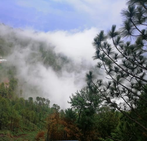 Murree home(On The rocks) Gharial  camp
