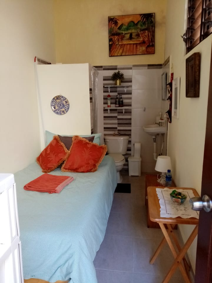 Habitación pequeña con baño incluido.
