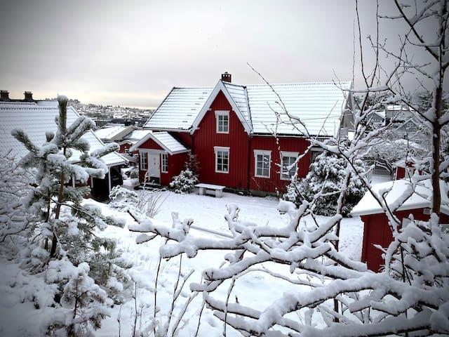 Idyllischer Hof auf der kleinen Insel Husøy