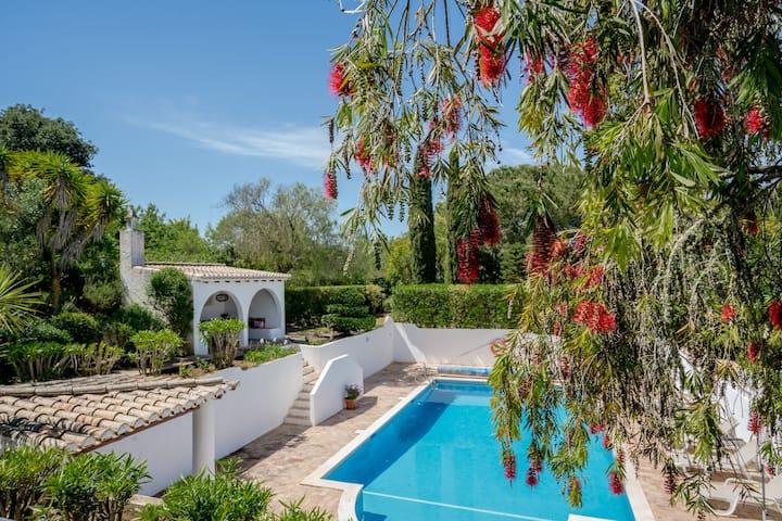 Wonderful Villa With Huge Swimming Pool Near Lagos
