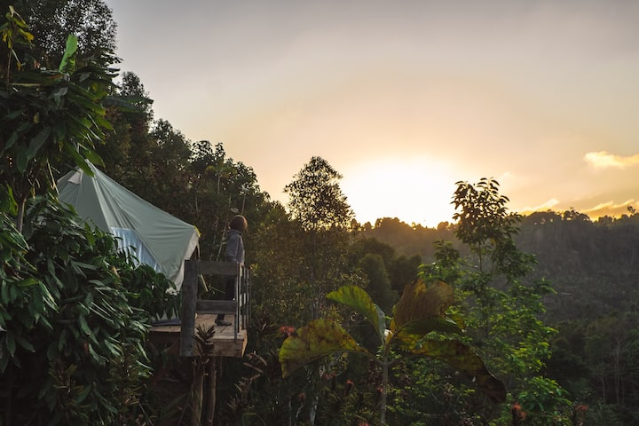 NEW Sunrise View at Munduk Mountains!