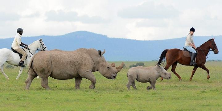 Luxury Bush Getaway, Mt Kenya Wildlife Estate #40