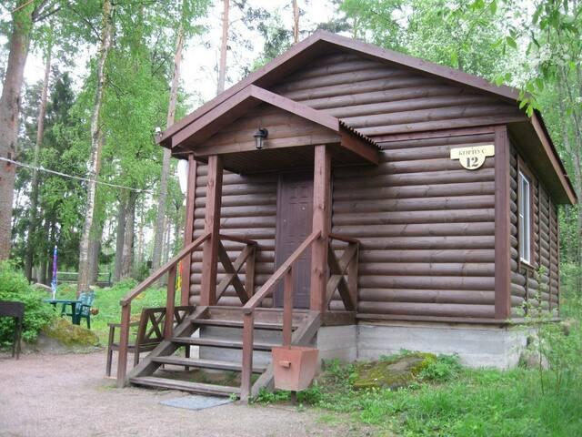 Плотвичка Заводь №12