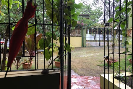 View from inside the main entrance to office and rooms 1 and 2. *Taken during the rain.