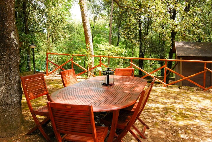NEW!Villa surrounded by greenery in Monte Malbe!x7