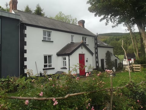 Unique house with views of Mournes and Cooleys