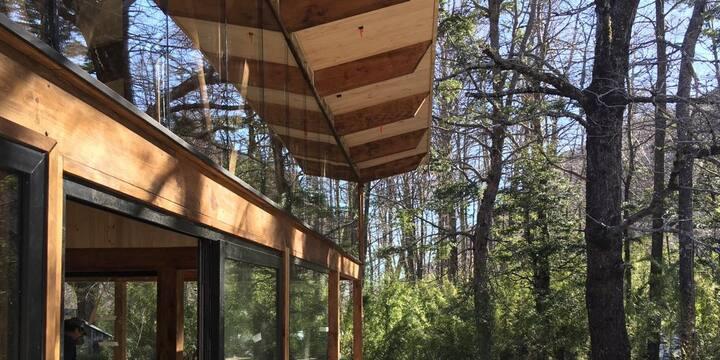 Nuevo Refugio Coyán - Bosque Nativo Malalcahuello