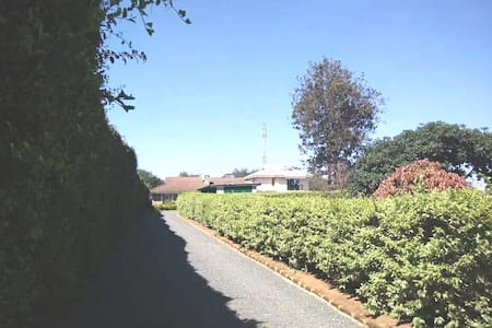 Smooth and securely  paved from the gate to the front door