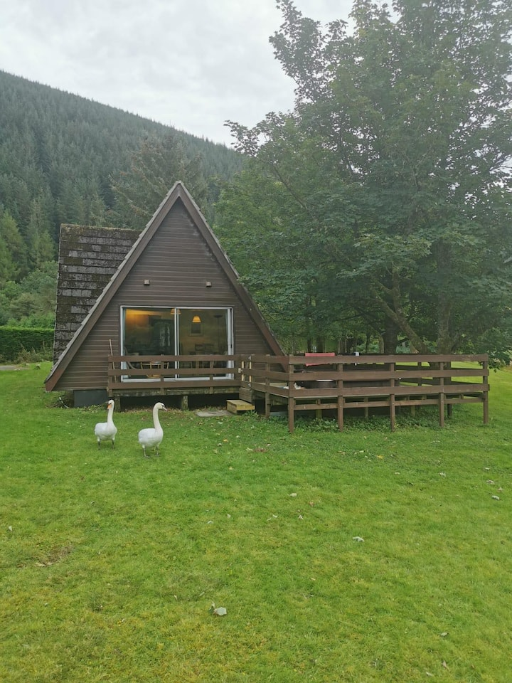 Wild Thistle Lodge  on lochside with hot tub