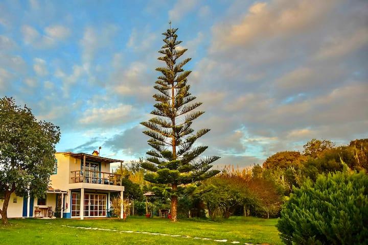 Costa Vicentina Casa em Monte Rural