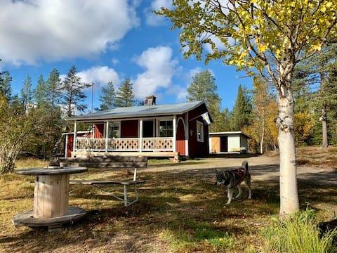 靠近拉普兰( Lapland )的荒野和宁静