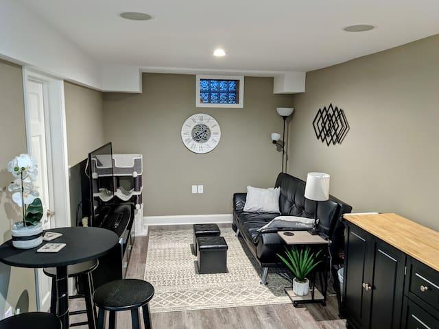 Guest Living Area (Basement)