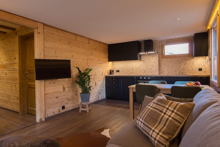 Newly renovated private apartment in Saas Fee