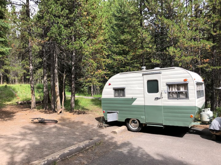 Unique Vintage Camper
