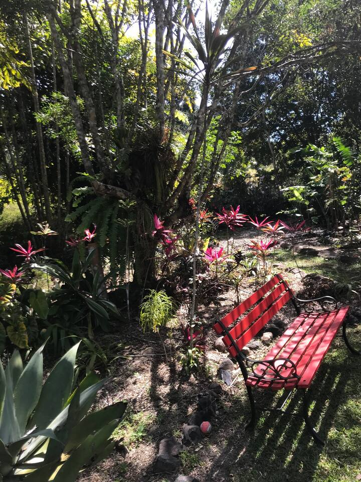 House on five acres of rainforest in Kuranda